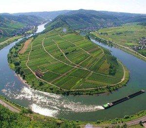 Rheinland-Pfalz (Rhénanie-Palatinat) dans Die deutschen Bundesländer (les régions d'Allemagne) 1668630_7db357d5a5-300x262