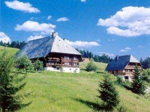 Sommerurlaub-in-Schramberg-im-Schwarzwald-300x225 schwarzwald